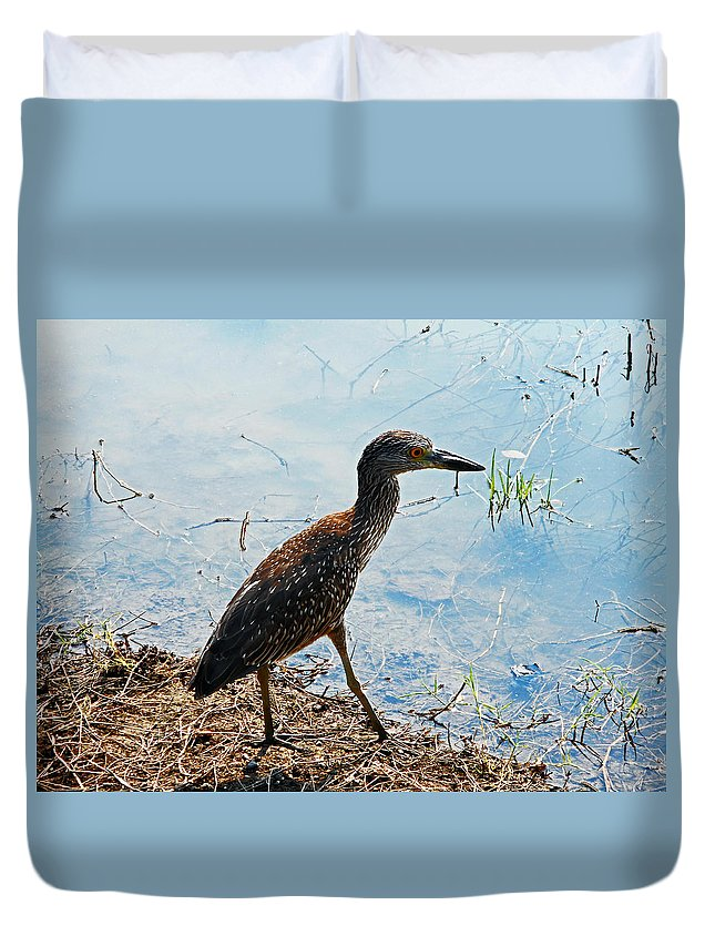 Bird Duvet Cover featuring the photograph Heron by Ron Kandt