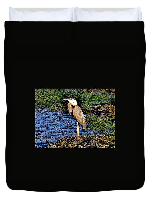 Heron Duvet Cover featuring the photograph Heron by Scott Hufford