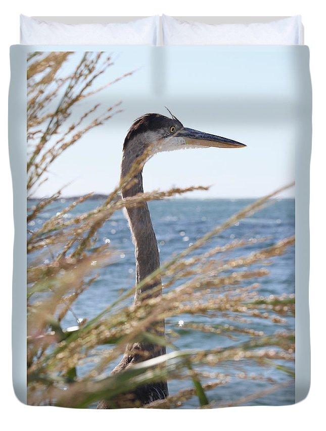 Heron Duvet Cover featuring the photograph Heron Through The Grass by Jim Clark