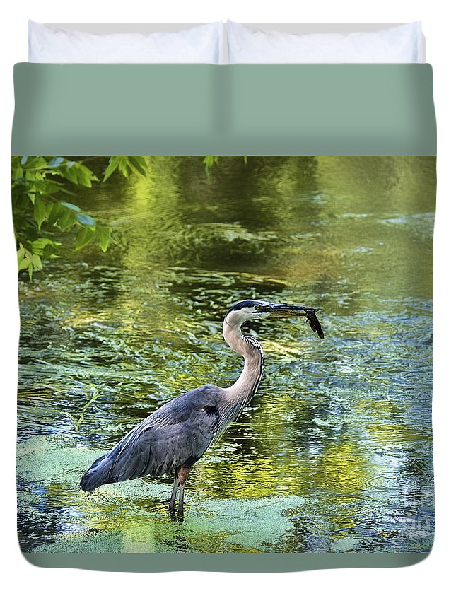 Heron Duvet Cover featuring the photograph Heron With Fish by David Arment