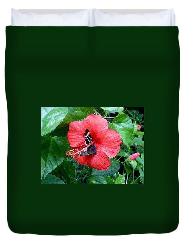 Flora Duvet Cover featuring the photograph Hibiscus And Butterfly Diners by Susan Baker