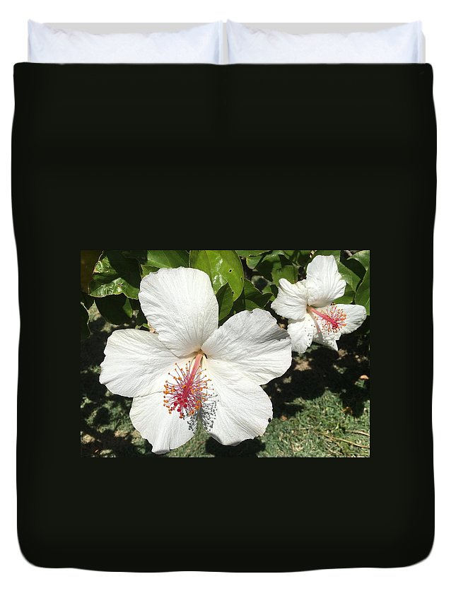 Island Flower Duvet Cover featuring the photograph Hibiscus by Charlie Latham