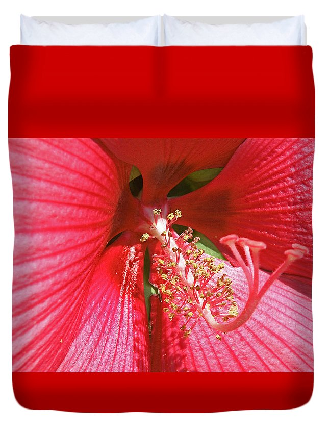 Flowers Duvet Cover featuring the photograph Hibiscus by Donna Shahan