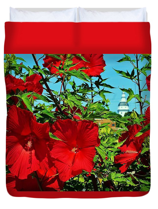 Annapolis Duvet Cover featuring the photograph Hibiscus In Naptown by Beth Deitrick