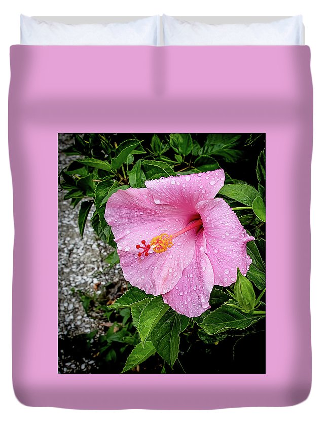 Amelia Island Duvet Cover featuring the photograph Hibiscus On A Rainy Day by Richard Goldman