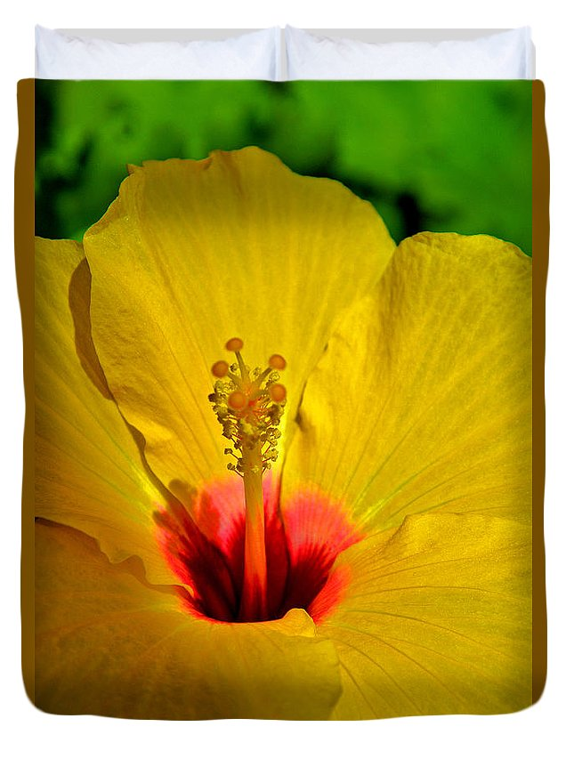 Orange Hibiscus Duvet Cover featuring the photograph Hibiscus Yellow. by Andy Za