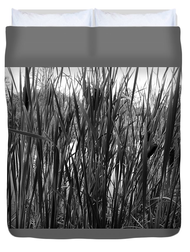 Lake Duvet Cover featuring the photograph Hidden Lake by Steve Bell