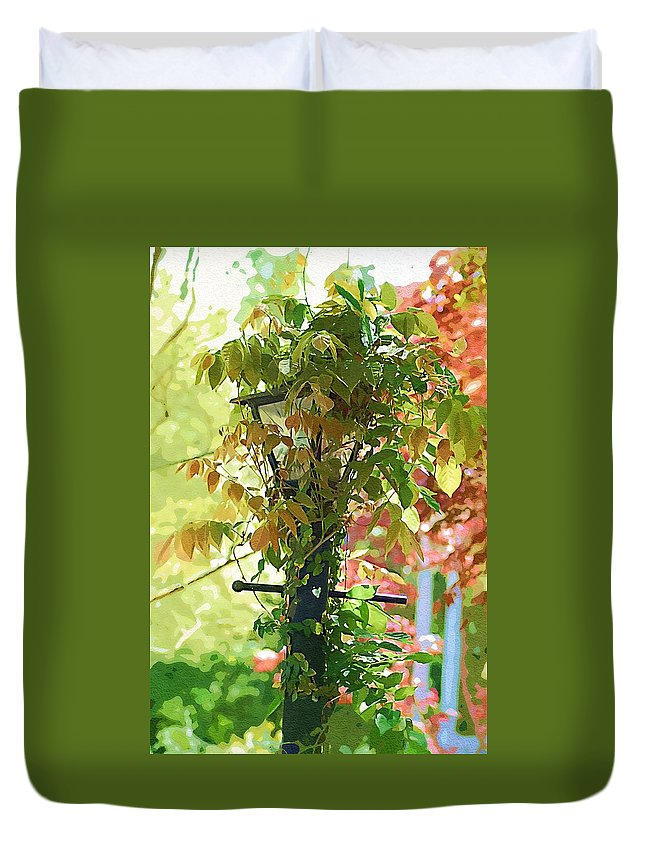 Lamp Duvet Cover featuring the photograph Hidden Lamp by Donna Bentley