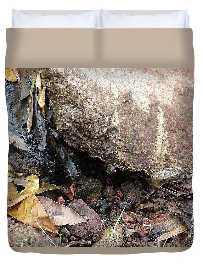 Port Gentil Duvet Cover featuring the photograph Hidden Sealife by Brett Winn