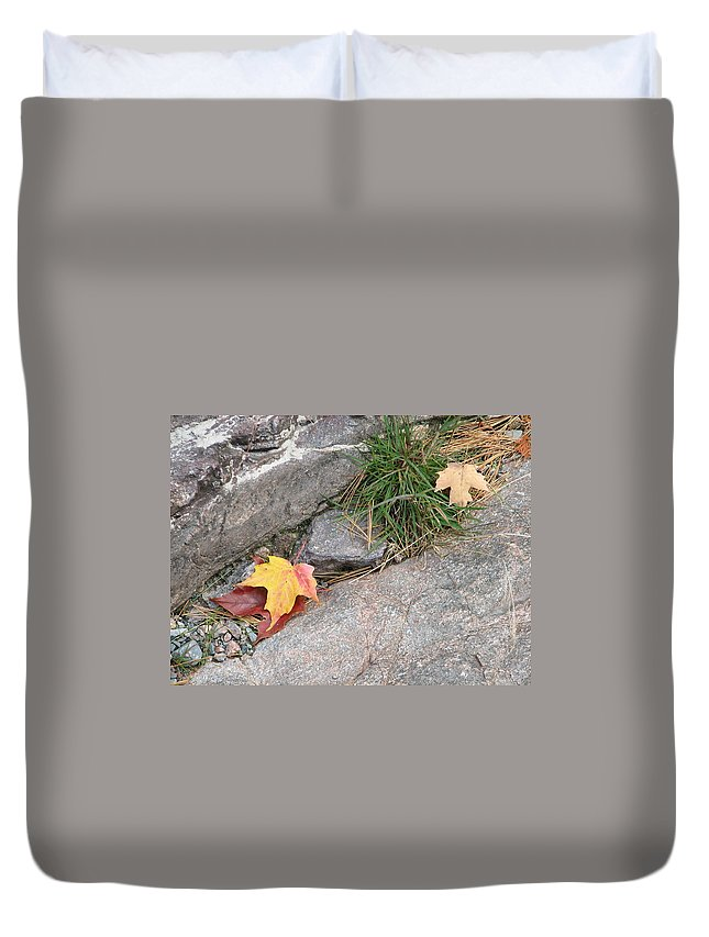 Fall Duvet Cover featuring the photograph Hiding by Kelly Mezzapelle