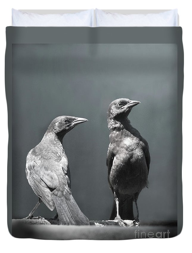 Blackbird Duvet Covers