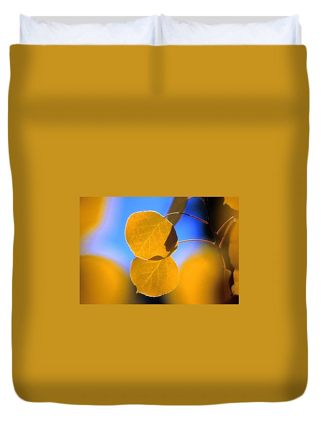 Aspen Duvet Cover featuring the photograph High Mountain Glory by Jerry McElroy