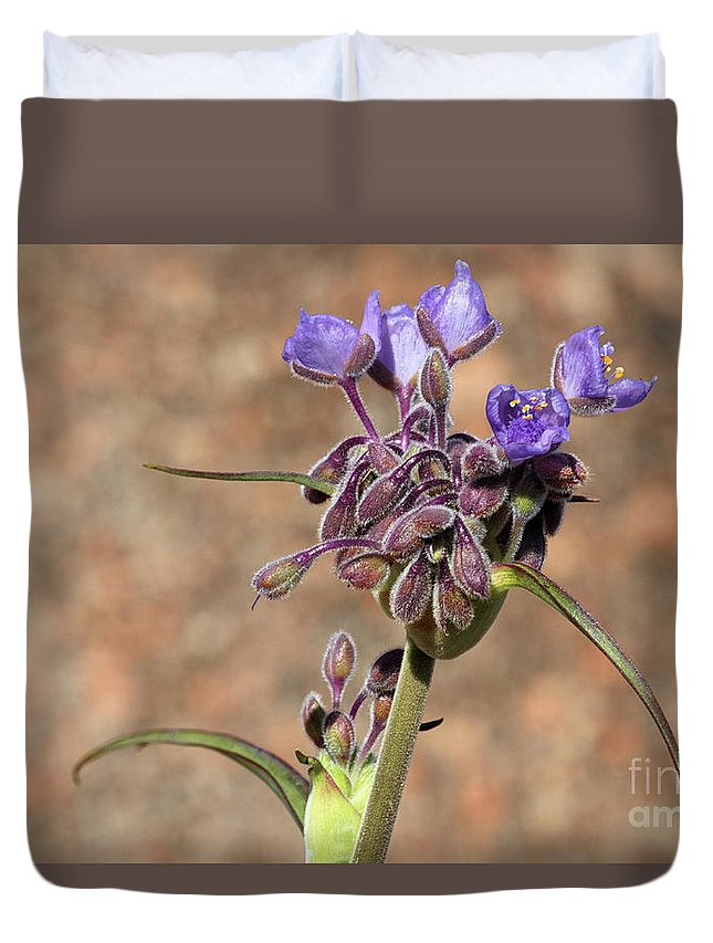 Flower Duvet Cover featuring the photograph Hill Country Flower by Rick Barker