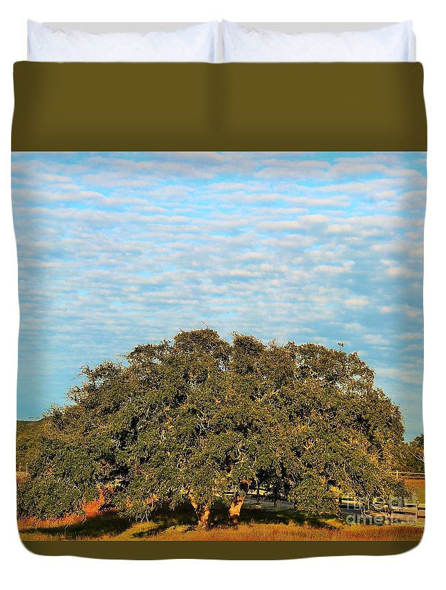Landscape.hill Country.texas.blue Cloudy Sky.tree.fence.wall Art Duvet Cover featuring the photograph Hill Country Tree by Jeff Downs