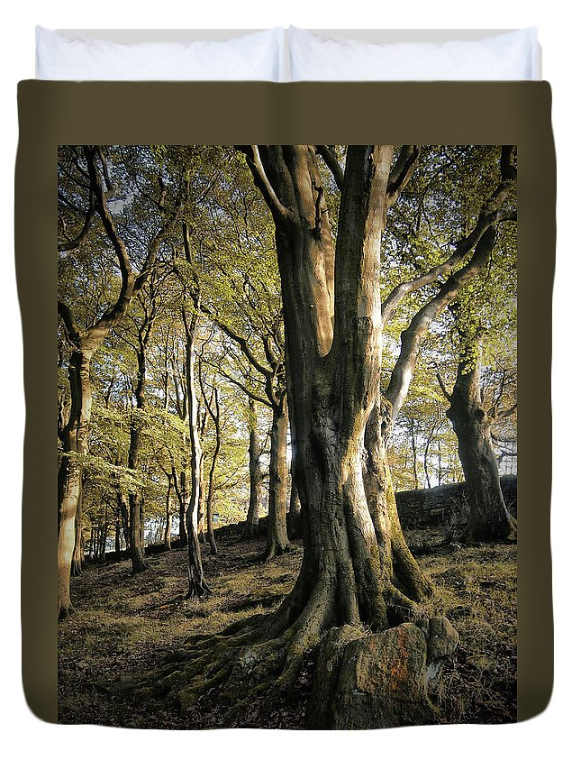 Tree Duvet Cover featuring the photograph Hillside Trees by Philip Openshaw