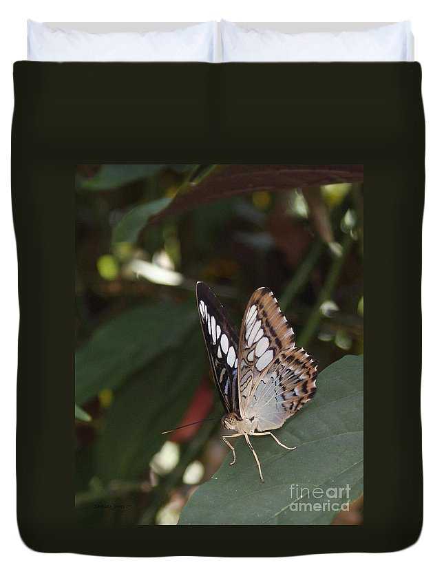Butterfly Duvet Cover featuring the photograph Hints Of Blue by Shelley Jones