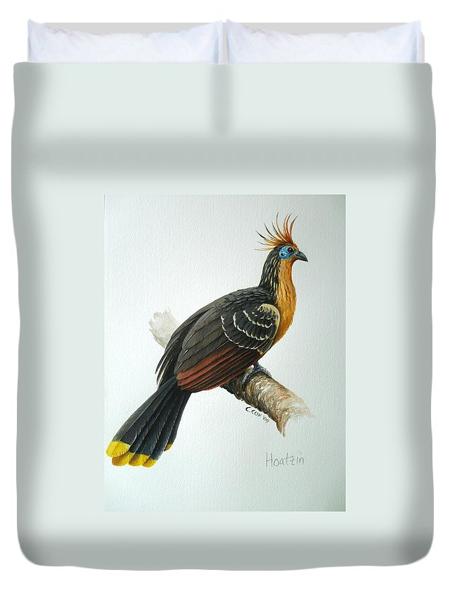 Hoatzin Duvet Cover featuring the painting Hoatzin by Christopher Cox