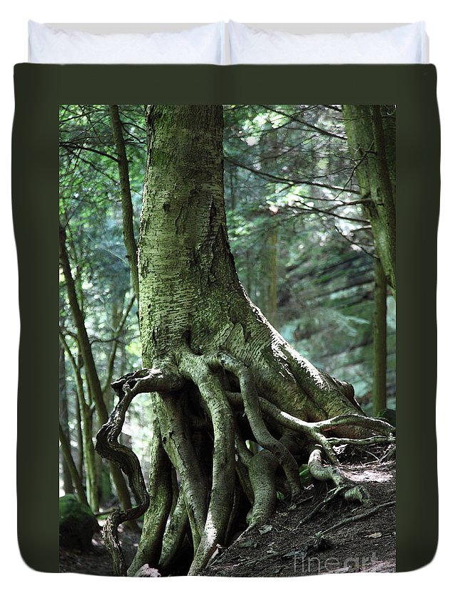 Trees Duvet Cover featuring the photograph Hold On To Me. by Amanda Barcon
