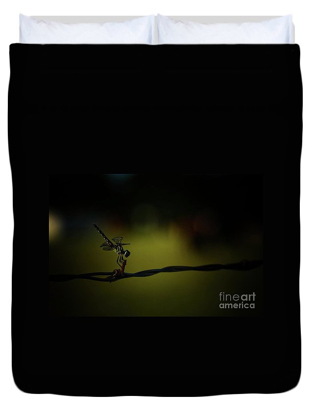 Draggon Fly Duvet Cover featuring the photograph Hold Tight by Kim Henderson