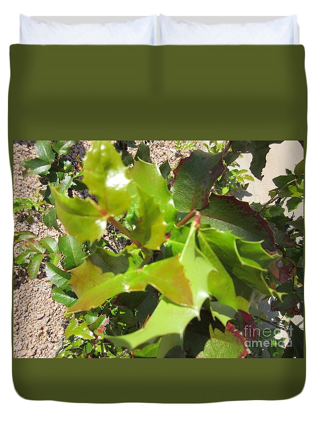 Holly Duvet Cover featuring the photograph Holly Leaves by Frederick Holiday