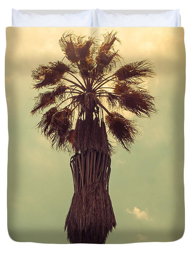 California Duvet Cover featuring the photograph Hollywood Gold by Joanne Donnelly