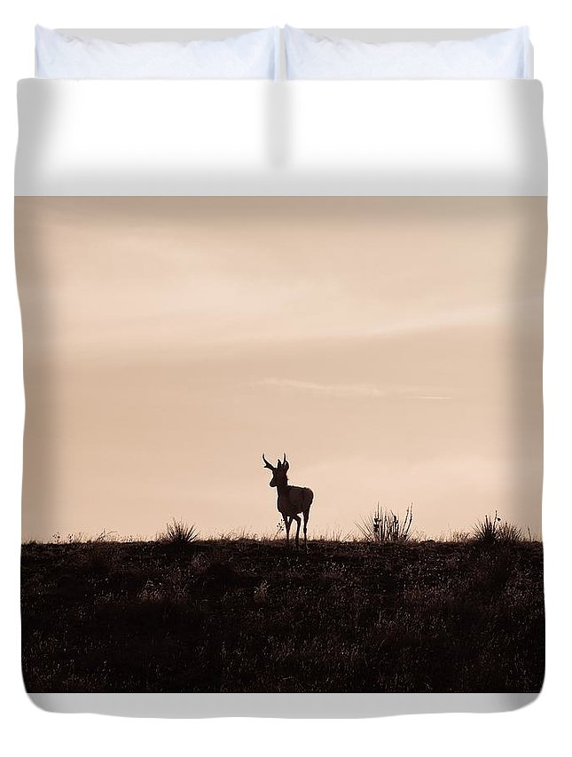 Animals Duvet Cover featuring the photograph Home On The Range by Ernie Echols