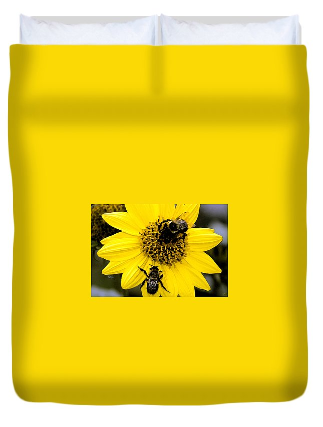 Honey Bees Duvet Cover featuring the painting Honey Bees by David Lee Thompson