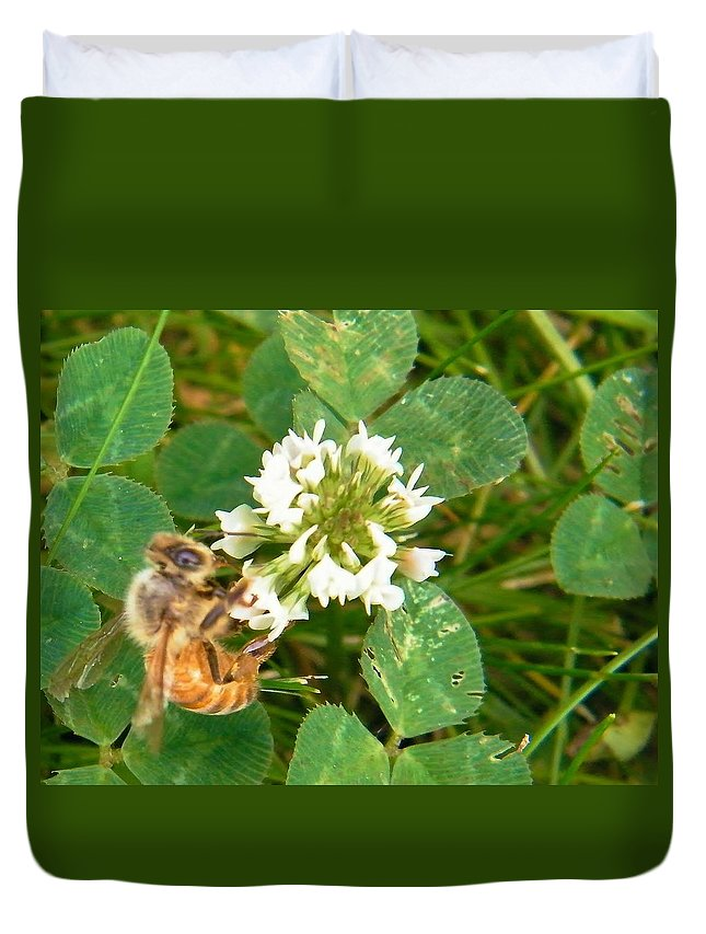 Honey Bee Duvet Cover featuring the photograph Honeybee Drinking From Clover Bloom  Summer Indiana by Rory Cubel