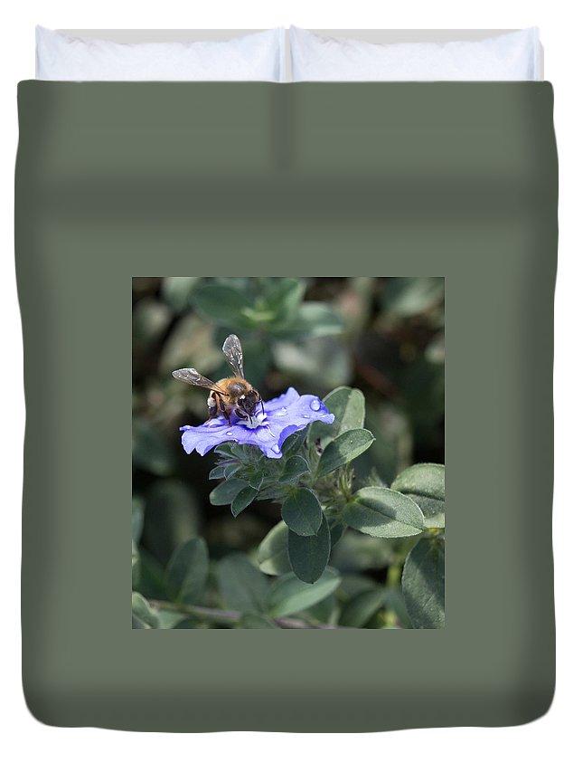Floral Duvet Cover featuring the photograph Honeybee On Blue Daze by JT Kramer