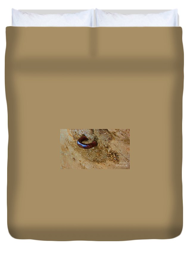 Concrete Duvet Cover featuring the photograph Hooked by Debbi Granruth