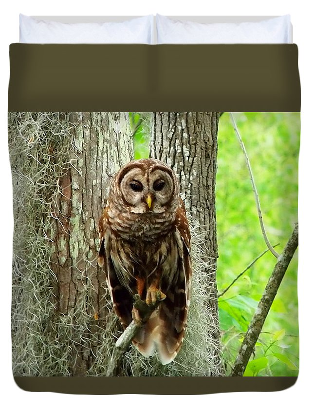 Owl Duvet Cover featuring the photograph Hoot by Gina Welch
