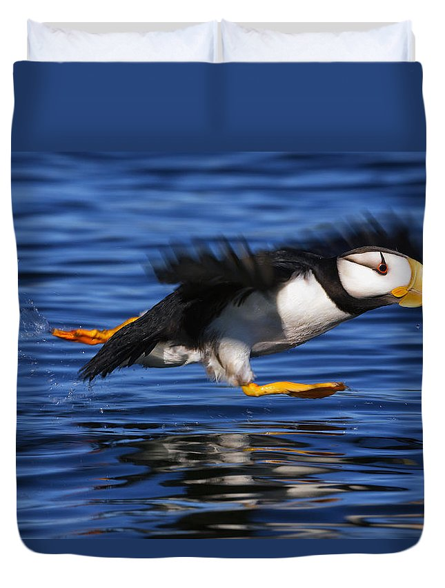 Puffin Duvet Covers