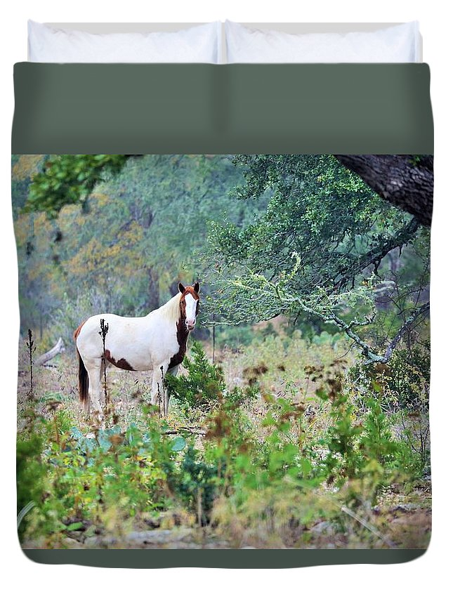 Duvet Cover featuring the photograph Horse 017 by Jeff Downs