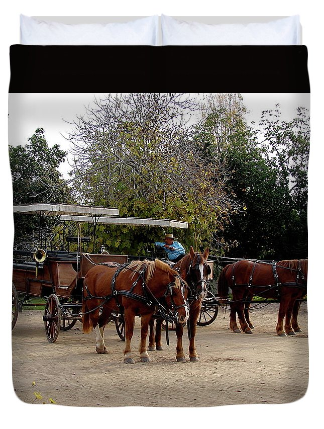 Colchagua Duvet Cover featuring the photograph Horse And Carriage by Brett Winn
