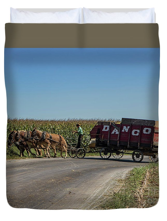 Lancaster Duvet Cover featuring the photograph Horse Driven by Lisa Hurylovich