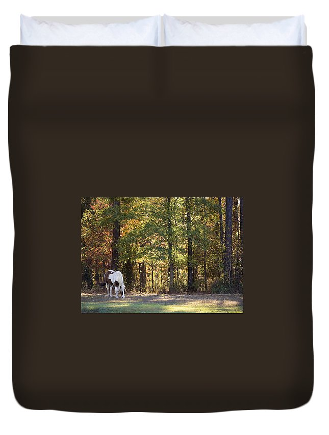 Horse Duvet Cover featuring the photograph Horse Grazing by Gary Adkins