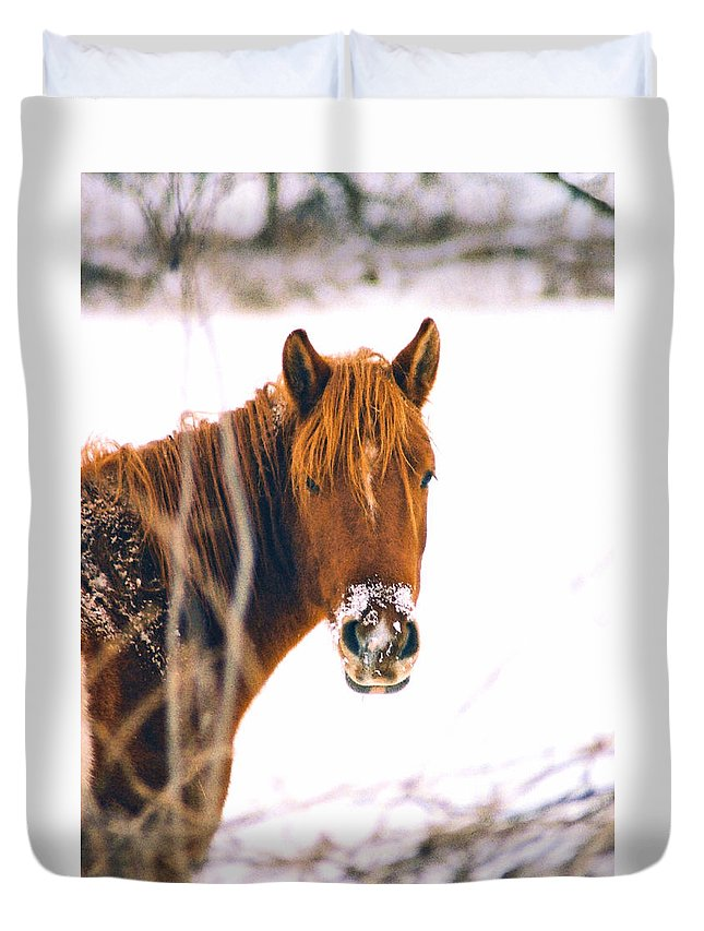 Horse Duvet Cover featuring the photograph Horse In Winter by Steve Karol