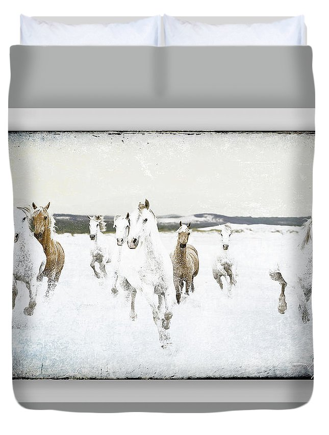 Horses Duvet Cover featuring the photograph Horses 33 by Ingrid Smith-Johnsen