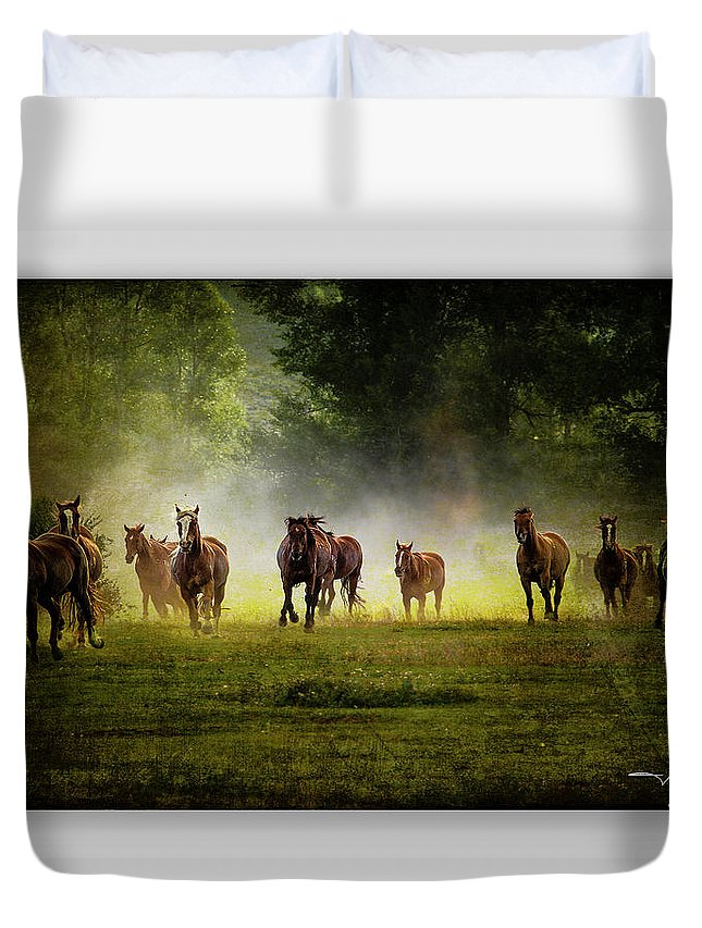 Horses Duvet Cover featuring the photograph Horses 36 by Ingrid Smith-Johnsen