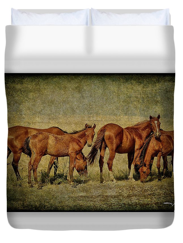Horses Duvet Cover featuring the photograph Horses 38 by Ingrid Smith-Johnsen