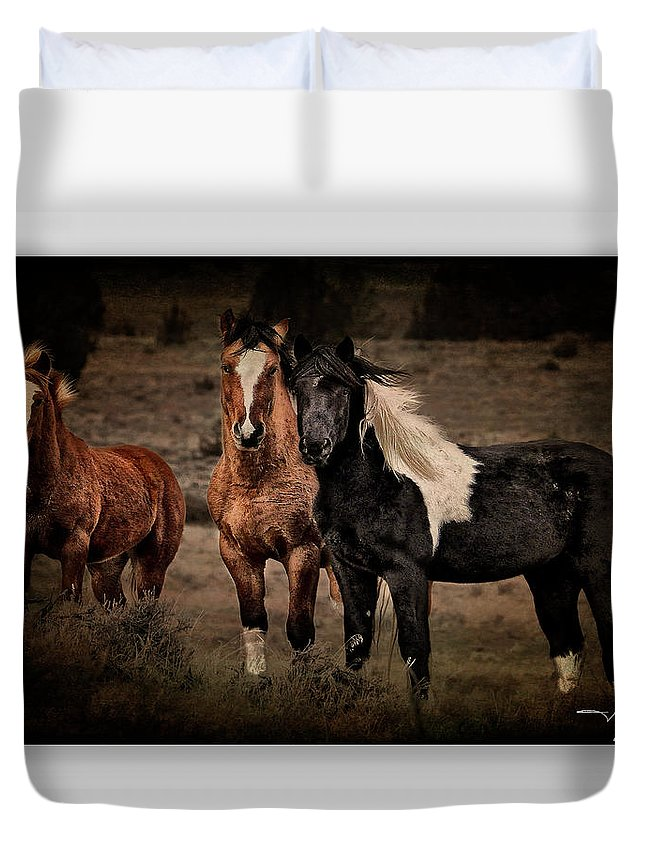 Horses Duvet Cover featuring the photograph Horses 40 by Ingrid Smith-Johnsen