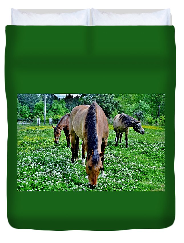 Horses Duvet Cover featuring the photograph Horses In The Meadow by Eileen Brymer