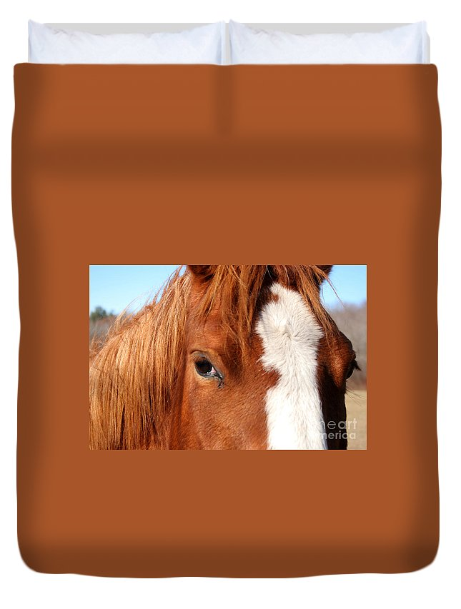 Horse Duvet Cover featuring the photograph Horse's Mane by Thomas Marchessault