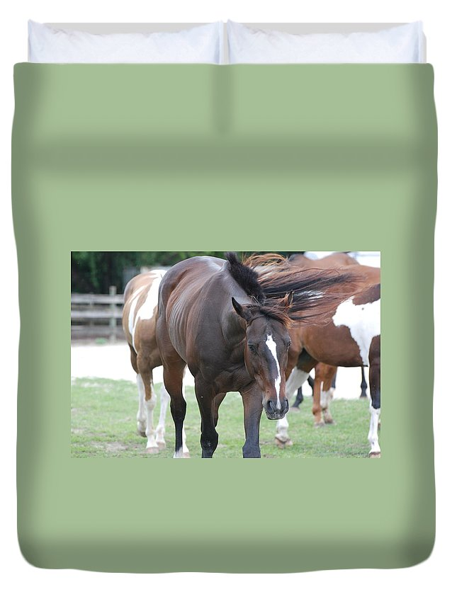 Horses Duvet Cover featuring the photograph Horses by Rob Hans