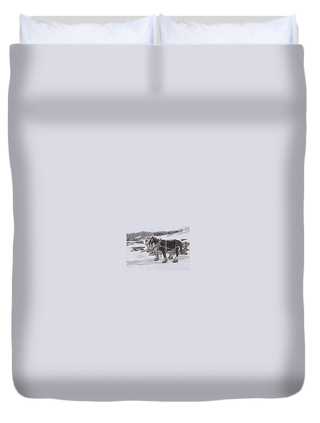 Historical Duvet Cover featuring the painting Horses Wearing Snowshoes Historical Vignette by Dawn Senior-Trask