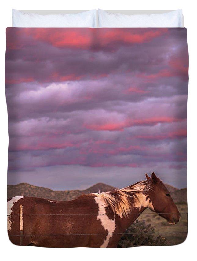 Southwest Duvet Cover featuring the photograph Horses With Southwest Sunset by Enrique Navarro