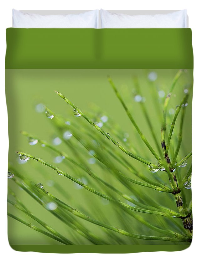 Astoria Duvet Cover featuring the photograph Horsetail With Dew by Robert Potts