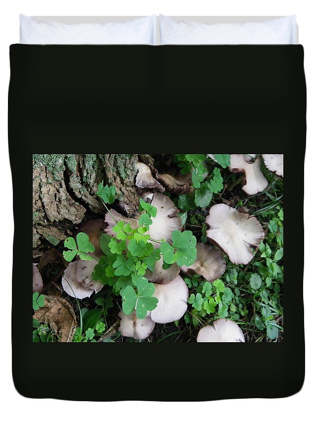 Nature Duvet Cover featuring the photograph Huddled by Peggy King