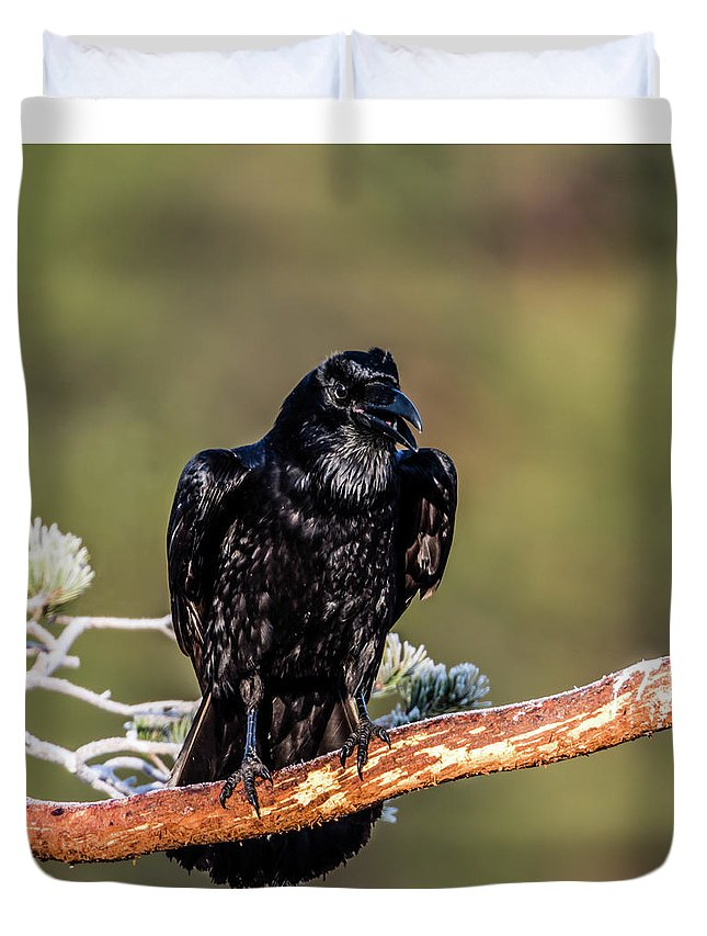 Raven Duvet Cover featuring the photograph Huginn The Raven by Torbjorn Swenelius