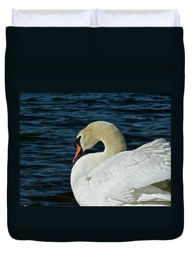 Swan Duvet Cover featuring the photograph Humble Beauty by Diana Hatcher